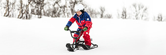 Шейни и снежни скутери STIGA